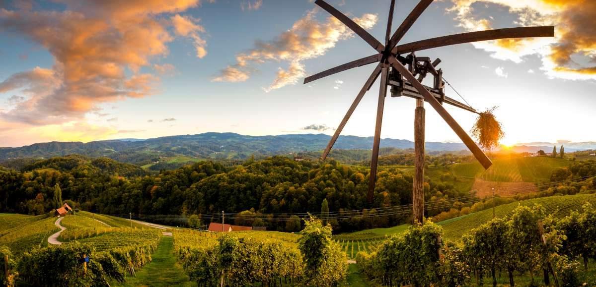 La región de vino en Eslovenia con Ekorna EXPERIENCE