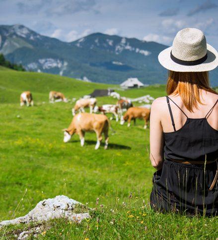 Viaje gastronómico por Eslovenia