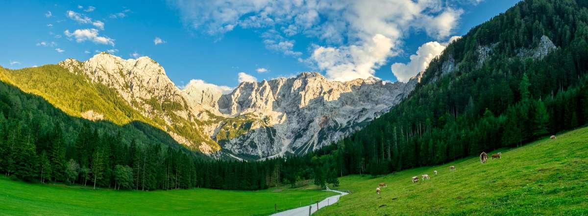 Glamping de lujo en Eslovenia - la mejor vista