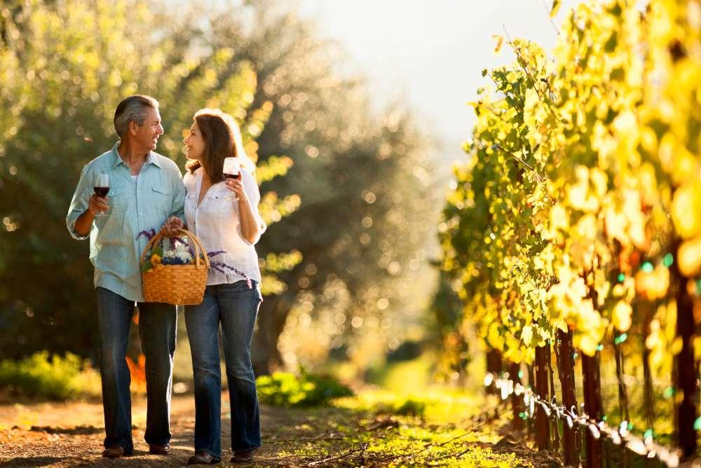 Slow travel - Rutas del vino esloveno