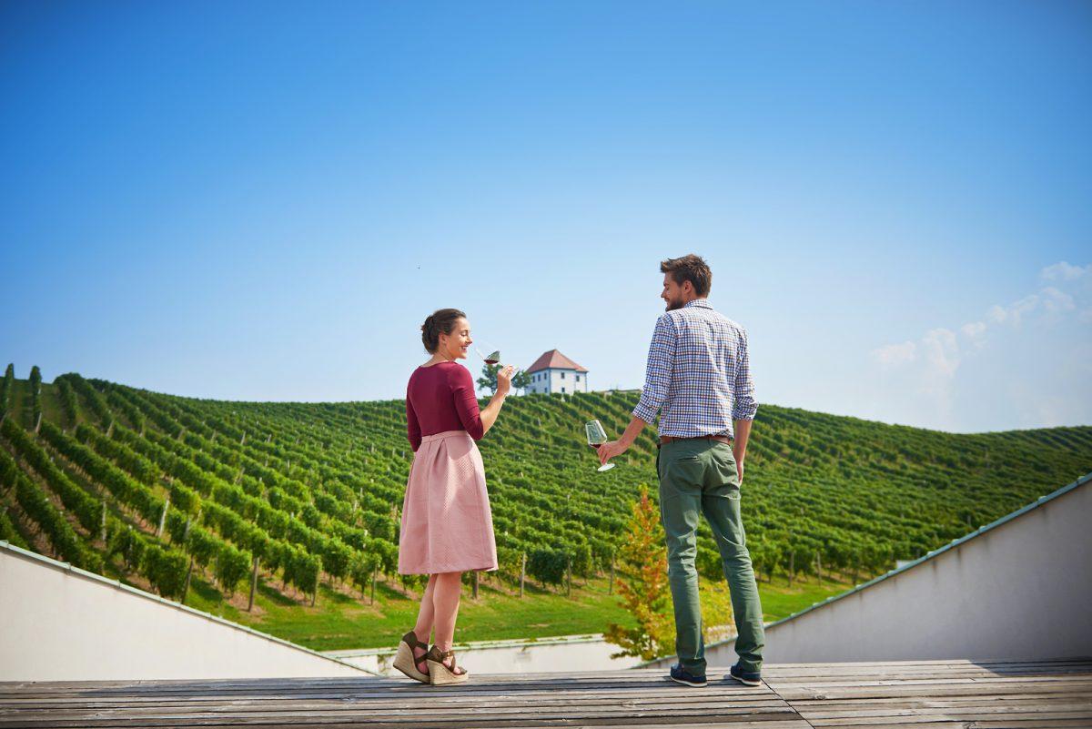 Degustación de vinos en Eslovenia